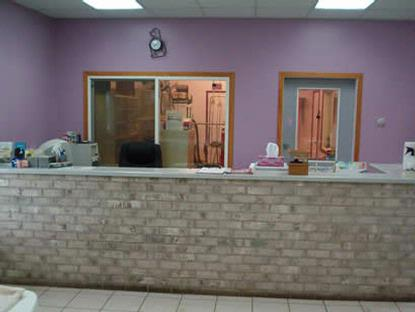 Classic Pet grooming and boarding Randolph MN.  About Us
